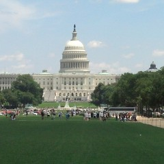 My International Experience in our Nation's Capital